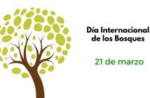 Día-intencional-de-los-bosques-214x140