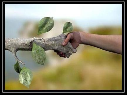 amigos-de-la-naturaleza