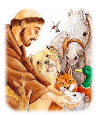http___2.bp.blogspot.com_-zmft7d064vu_uyp3to7nlbi_aaaaaaaajso_0mbfaixwhlq_s1600_sanfrancisco-animales