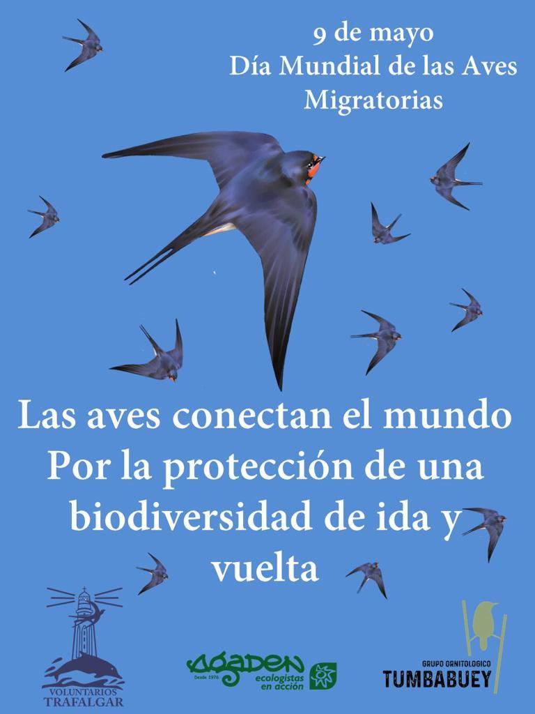 AVES_MIGRATORIAS
